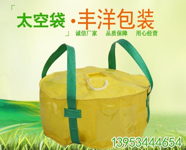 广东太空袋